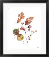 Framed Pieces of Autumn I