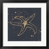 Gold Starfish III Framed Print