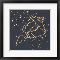 Gold Conch IV Framed Print