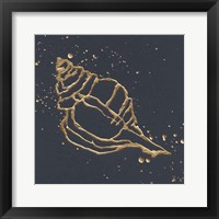 Gold Conch III Framed Print
