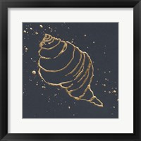 Gold Conch I Framed Print