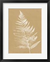 Nature by the Lake Ferns VI Brown Framed Print