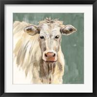 Framed White Cow on Sage