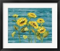 Framed Cottage Sunflowers Teal