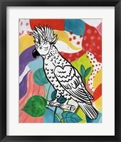 Framed Jungle Cockatoo