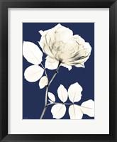 Rose Cool Dynasty 1 Framed Print
