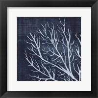 Seaweed 1 Framed Print