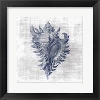 Sea Life 1 Framed Print