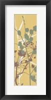 Grasses 4 Framed Print