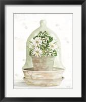 Floral Cloche II Framed Print