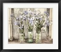 Framed Blue Roadside Beauties