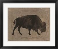 Buffalo Impression 1 Framed Print