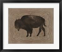 Buffalo Impression 2 Framed Print