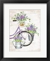 Framed Hyacinth Harvest