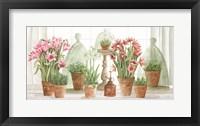 Terracotta Collection I Framed Print