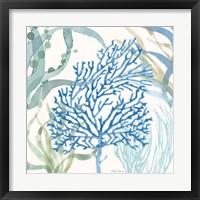 Soft Shores VI Framed Print