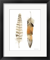 Natural Feathers II Framed Print