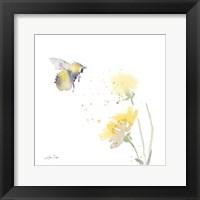 Sunflower Meadow IV Framed Print