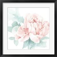 Poetic Blooming I Pink Framed Print