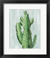 Front Yard Cactus II Slate Framed Print