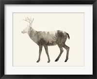 The Wilderness IV Framed Print