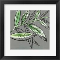 Tropic Botanicals I Framed Print
