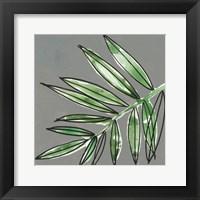 Tropic Botanicals IX Framed Print