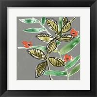 Tropic Botanicals V Framed Print
