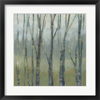 Transitional Treeline II Framed Print