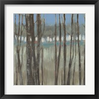 Within the Trees II Framed Print