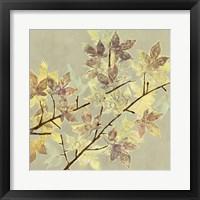Renewed Maple I Framed Print