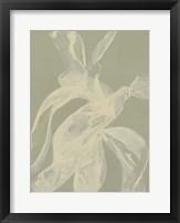 White Ribbon on Celadon I Framed Print