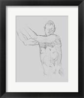 Male Torso Sketch III Framed Print