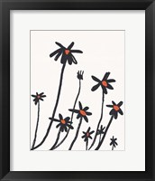 Young Coneflowers I Framed Print