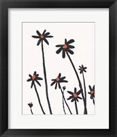 Young Coneflowers II Framed Print