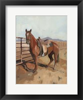 Range Horse II Framed Print