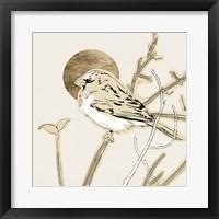 Spring Passerine II Framed Print