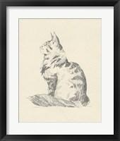 House Cat II Framed Print