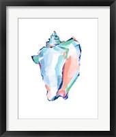 Pop Shell Study I Framed Print
