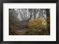 Framed Stone Steps