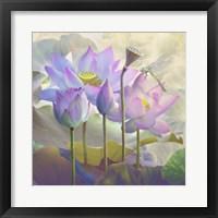 Lotus Sanctuary I Framed Print