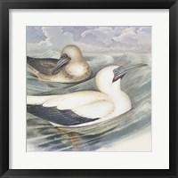 Surf & Sand III Framed Print