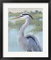 Blue Heron Portrait I Framed Print