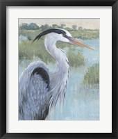 Blue Heron Portrait II Framed Print