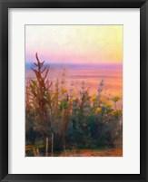 Light of Day II Framed Print