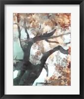 Fall Tree I Framed Print