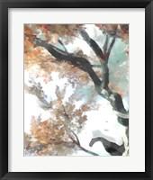 Fall Tree II Framed Print