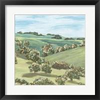 Hill Lines V Framed Print