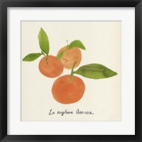 Citrus Trattare II Framed Print