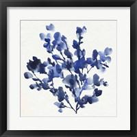 Cobalt Blossom I Framed Print